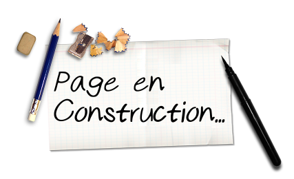 Page en Construction nataswim