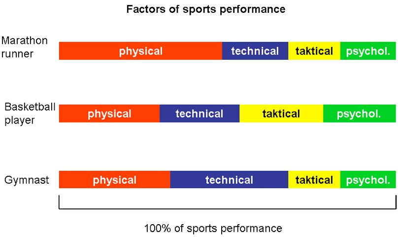 Basis of Sports Training 01