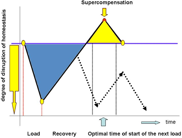 The emergence of supercompensation